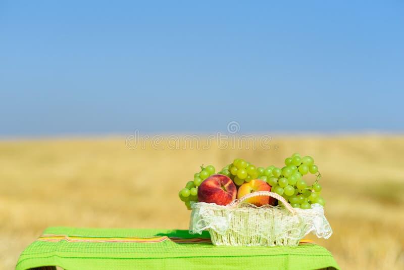 Uva e pesche sul canestro bianco della paglia all'aperto sui precedenti gialli del giacimento di grano fotografia stock