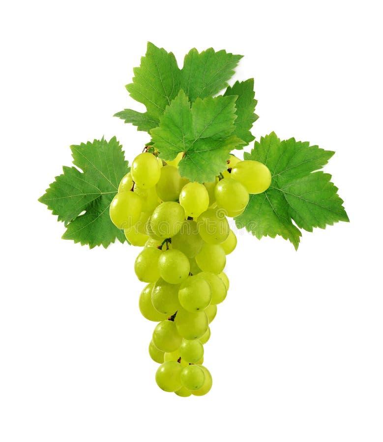 Uva fresca con i fogli fotografia stock libera da diritti