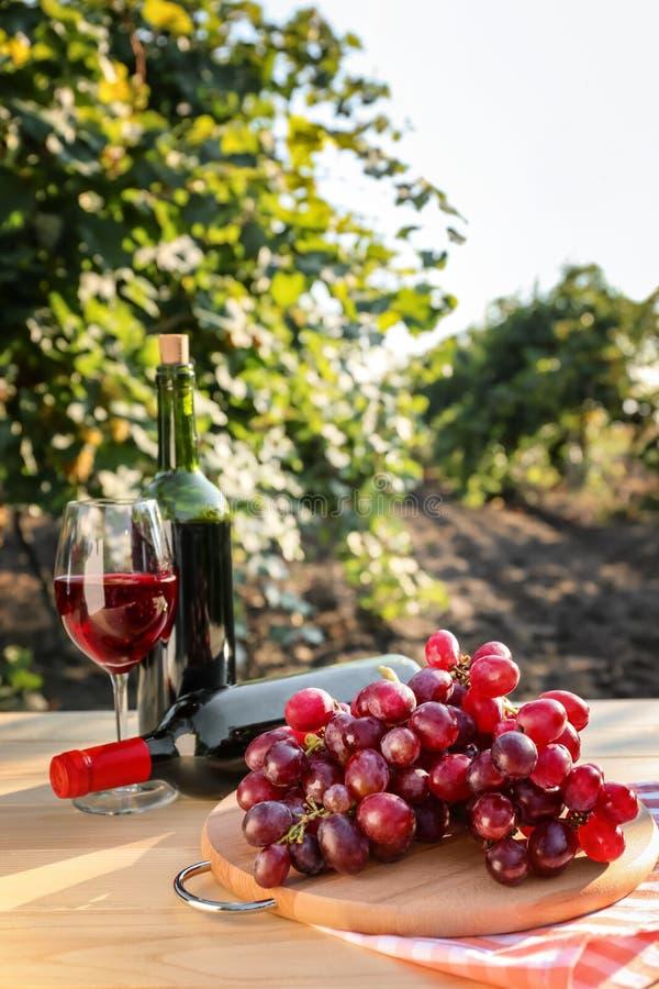Uva fresca con las botellas y el vidrio de vino tinto en la tabla de madera en viñedo fotos de archivo