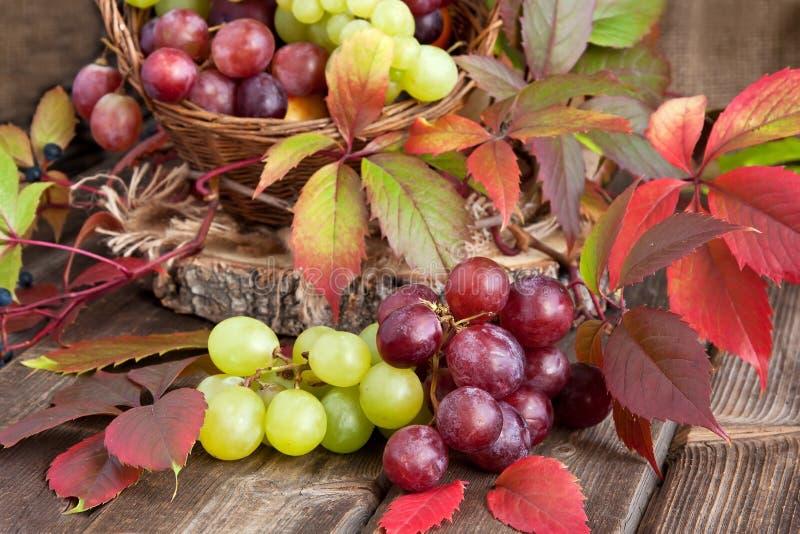 Uva fresca sul bordo di legno fotografia stock