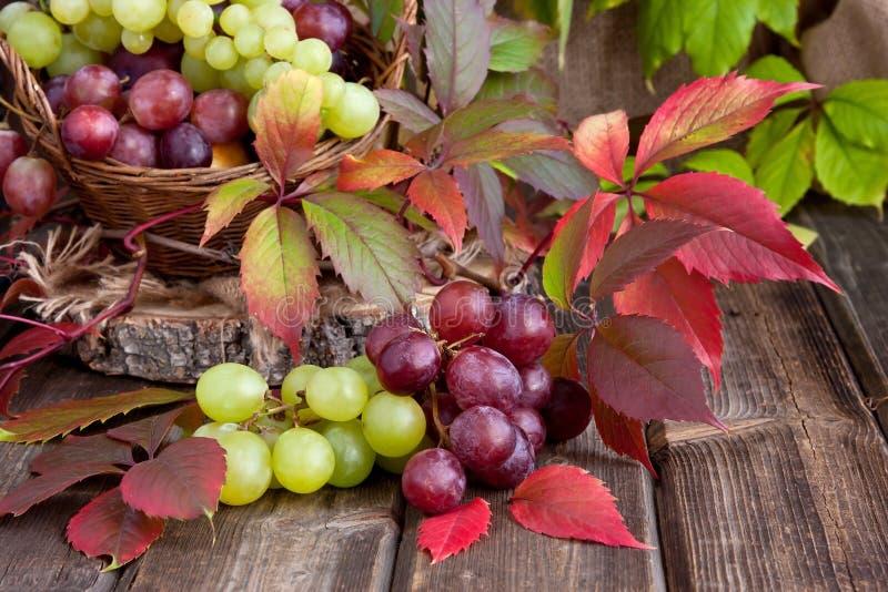 Uva fresca sul bordo di legno fotografie stock