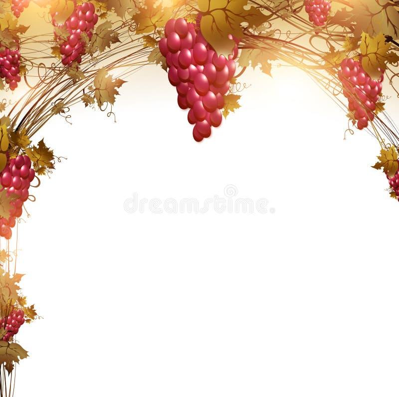 Uva rossa royalty illustrazione gratis