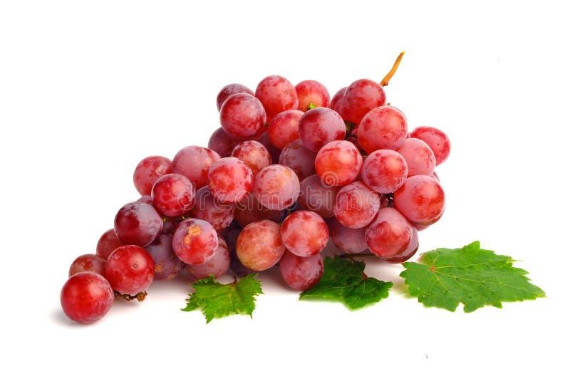 Uva rossa con il foglio isolato su priorità bassa bianca fotografie stock