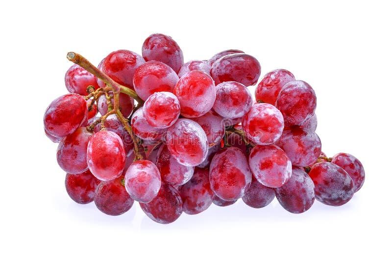 Uva rossa con le gocce di acqua isolate su bianco fotografia stock