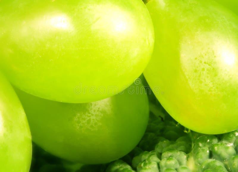 Uva verde fotografie stock libere da diritti