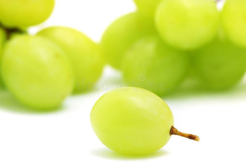 Uva verde fotos de archivo