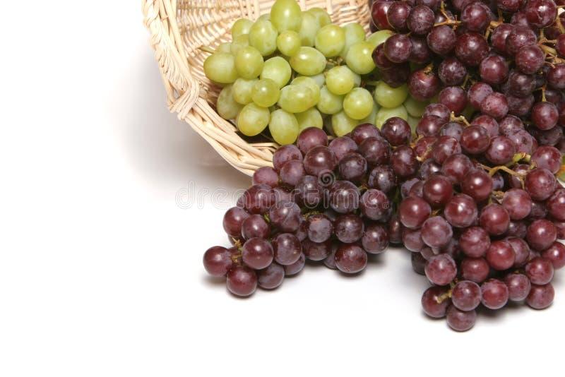 Uva verde e rossa immagine stock