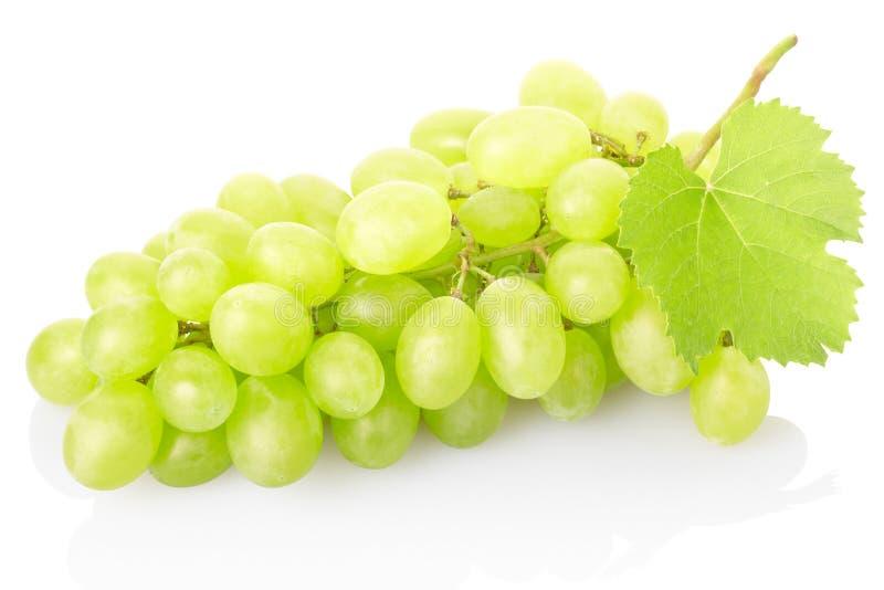 Uva verde fresca no branco imagens de stock