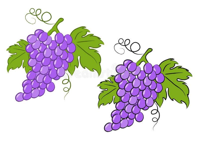 Uvas ilustração royalty free