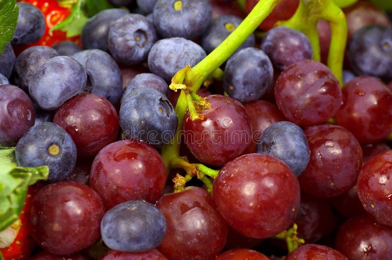 Download Uvas imagem de stock. Imagem de fruta, alimento, snack, bagas - 63695