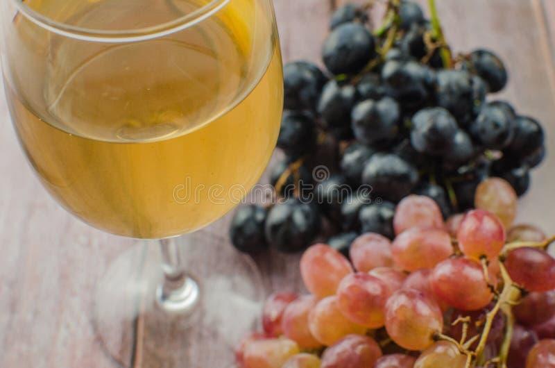 Uvas azules con la consumición sana de la hoja verde, aislado imagen de archivo