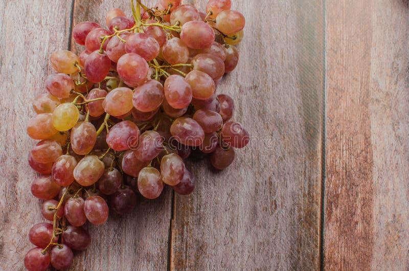 Uvas azules con la consumición sana de la hoja verde, aislado imagen de archivo libre de regalías