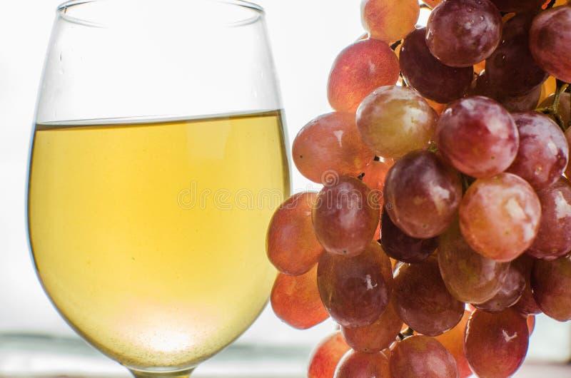 Uvas azules con la consumición sana de la hoja verde, aislado foto de archivo