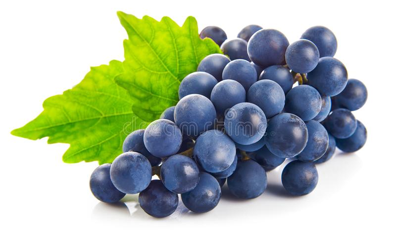 Uvas azules con la consumición sana de la hoja verde, en el fondo blanco imagen de archivo libre de regalías