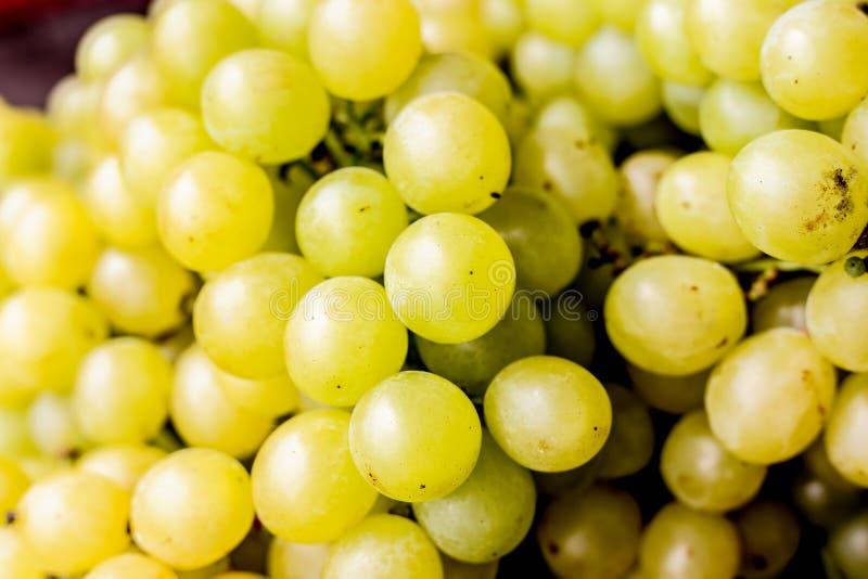 Uvas blancas frescas fotografía de archivo libre de regalías