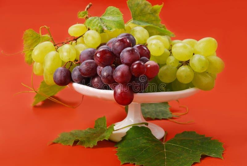Uvas blancas y rojas imagen de archivo libre de regalías