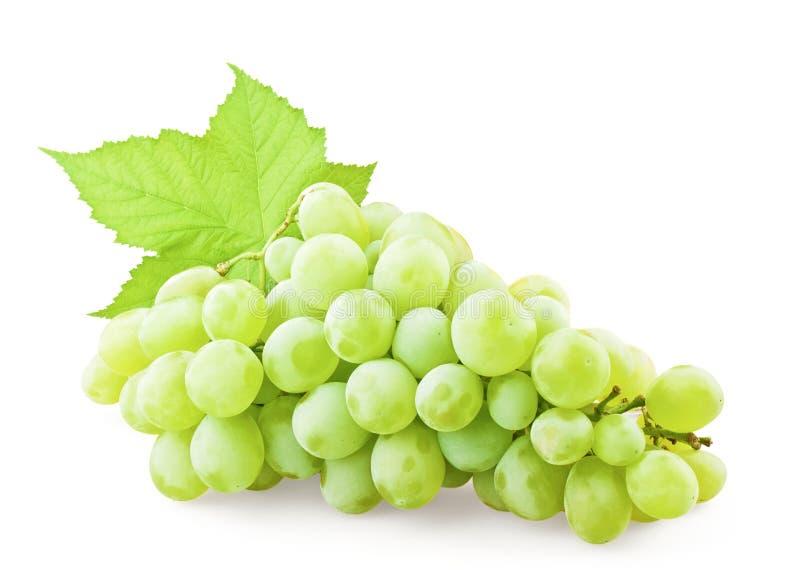 Uvas com folha foto de stock