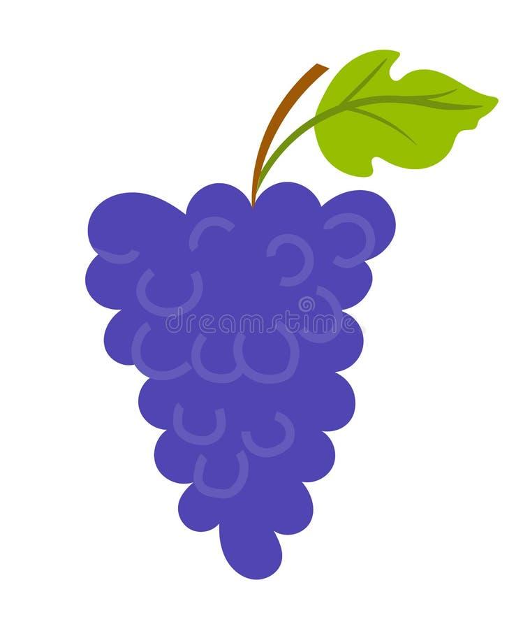 Uvas con la hoja y el palillo de madera, vector del viñedo stock de ilustración