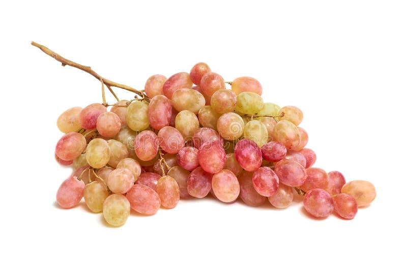 Uvas cor-de-rosa coloridas isoladas no fundo branco fotos de stock royalty free