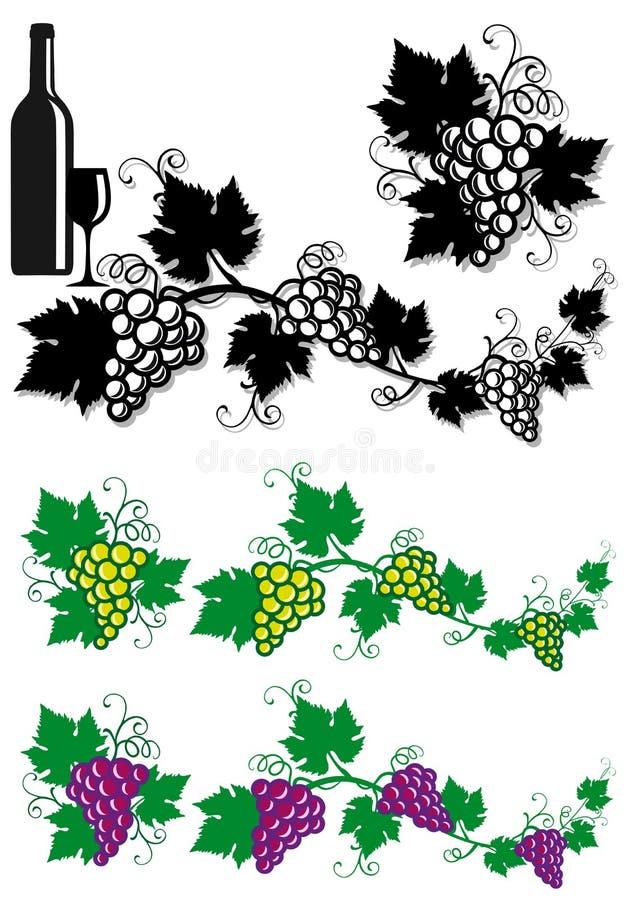 Uvas e folhas da videira ilustração stock