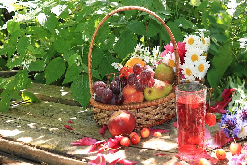 Uvas e maçãs pretas suculentas, peras e pêssegos em uma cesta no jardim em uma tabela de madeira velha, fotos de stock royalty free