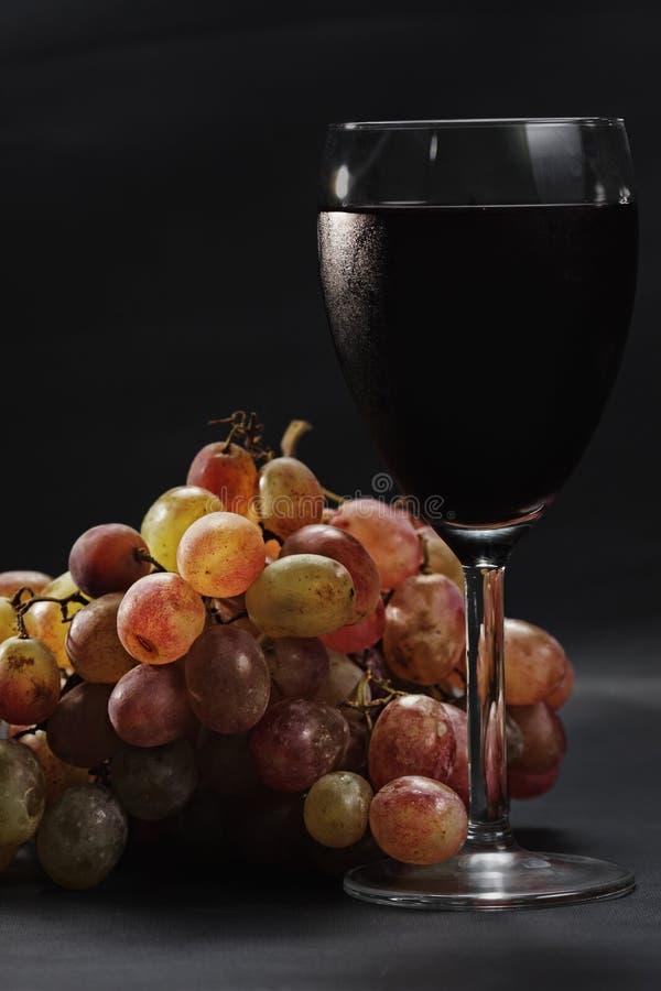 Uvas e vinho vermelho imagem de stock