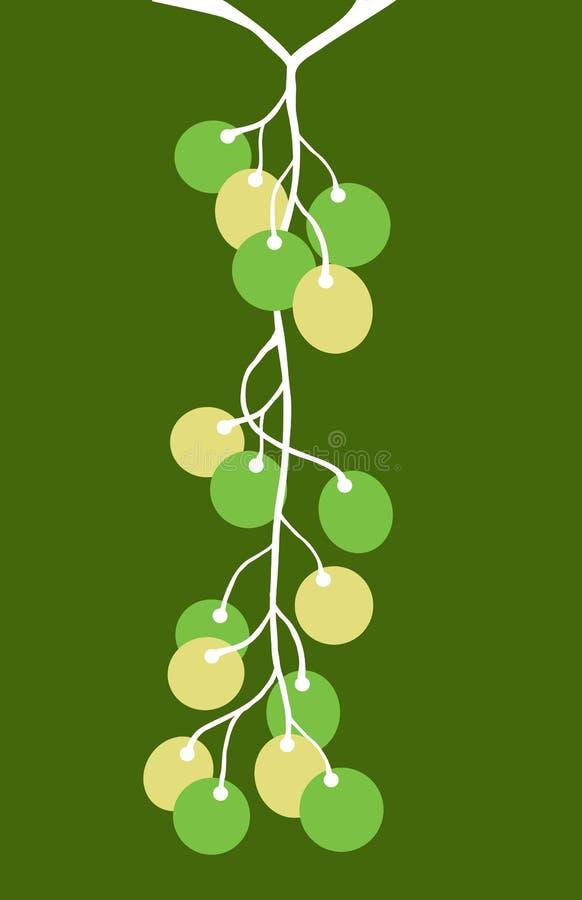 Uvas en la vid 3 ilustración del vector