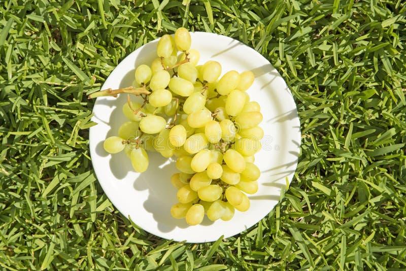 Uvas en una placa imagenes de archivo