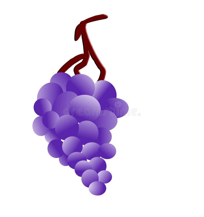 Uvas en vástago ilustración del vector
