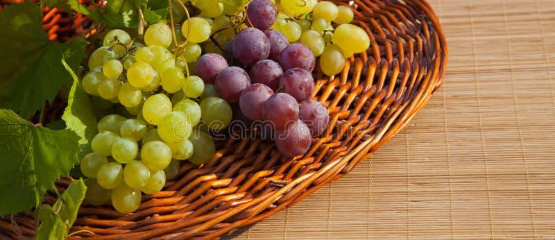 Uvas frescas fotos de archivo