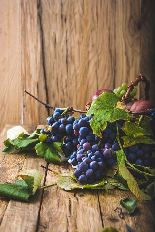 Uvas frescas en la madera fotos de archivo libres de regalías