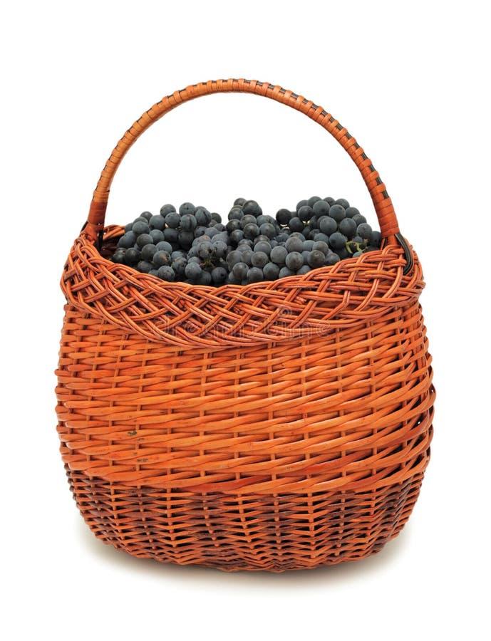 Uvas frescas en una cesta, aislada fotografía de archivo
