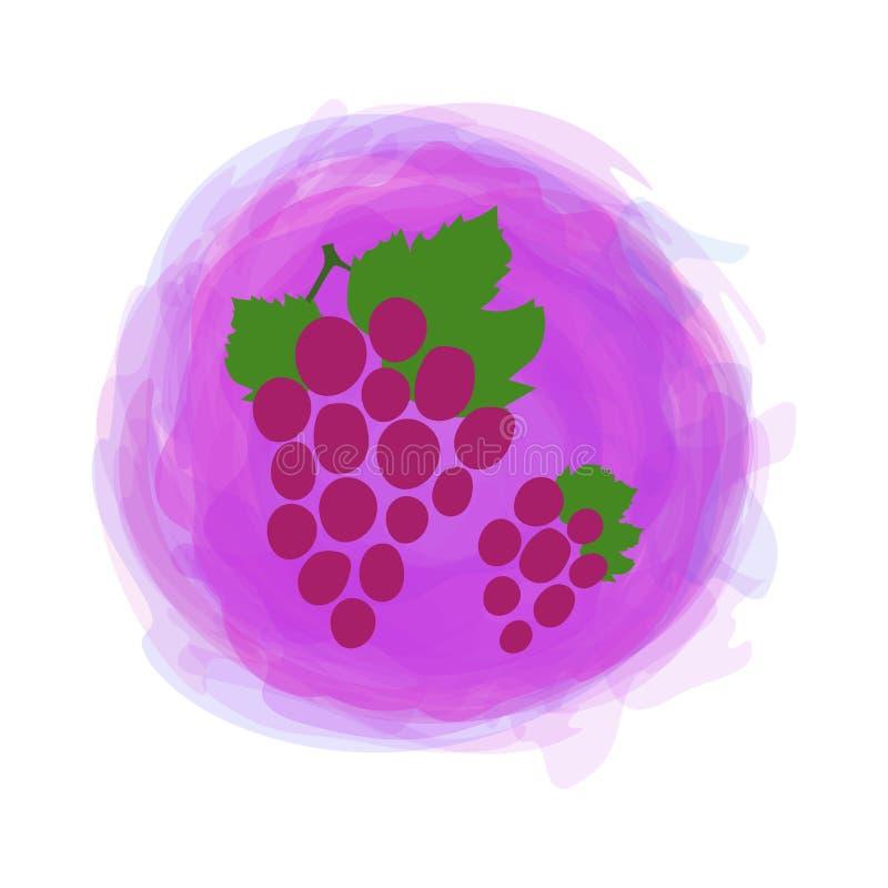 Uvas Fruto do esboço com a folha isolada no fundo redondo da aquarela Vetor tirado m?o da garatuja Etiqueta do alimento biol?gico ilustração royalty free