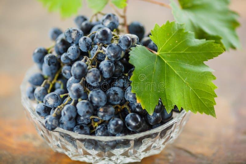 Uvas maduras suculentas frescas com folhas verdes em uma bacia branca, fatura de vinho imagens de stock royalty free