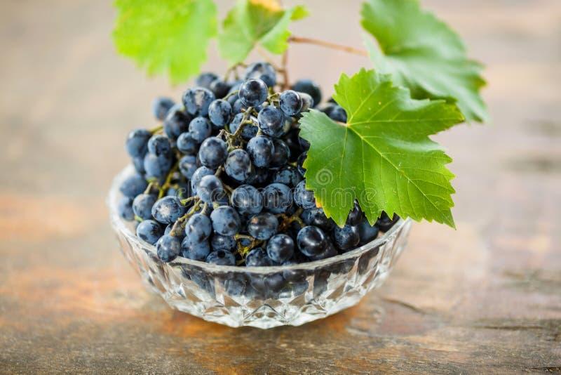 Uvas maduras suculentas frescas com folhas verdes em uma bacia branca, fatura de vinho fotos de stock royalty free