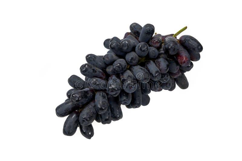 Uvas oscuras del zafiro, una fruta jugosa sabrosa fotografía de archivo