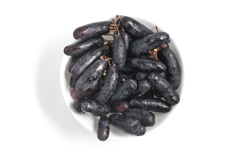 Uvas pretas longas da meia-noite fotografia de stock royalty free