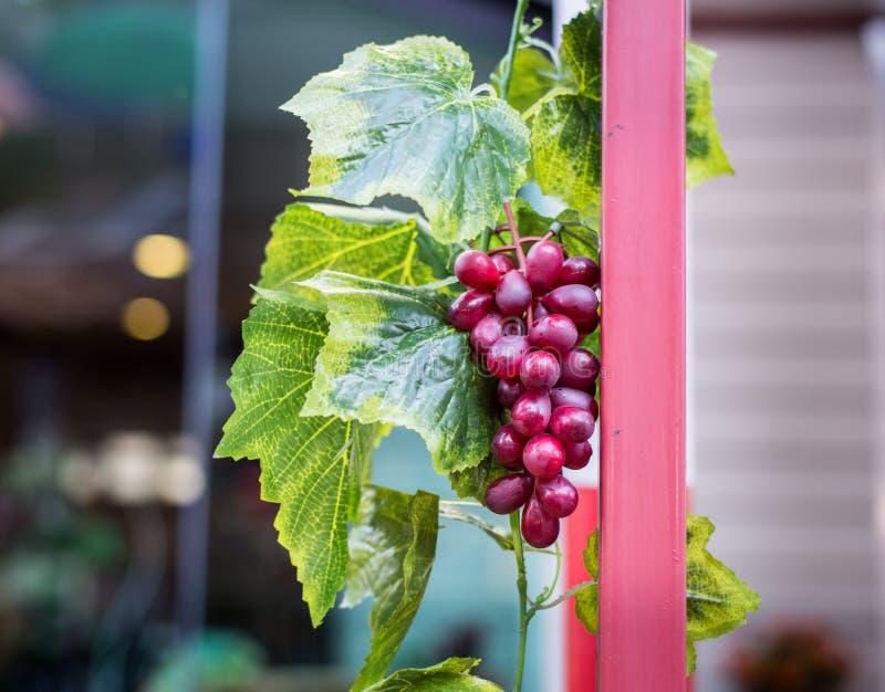 Download Uvas rojas foto de archivo. Imagen de agricultura, fruta - 42435870