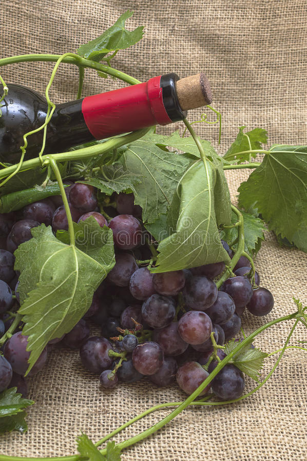 Uvas rojas con la botella de vino rojo imagenes de archivo