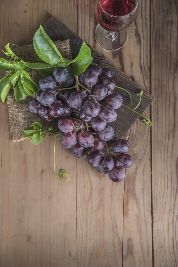 Uvas rojas de las frutas sanas en el vi?edo imagen de archivo libre de regalías