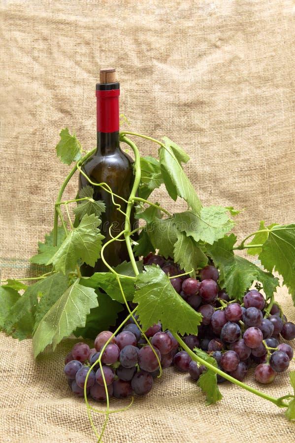 Uvas rojas dulces con la botella de vino rojo. fotografía de archivo libre de regalías