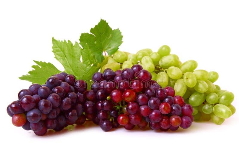 Uvas rojas y verdes fotografía de archivo