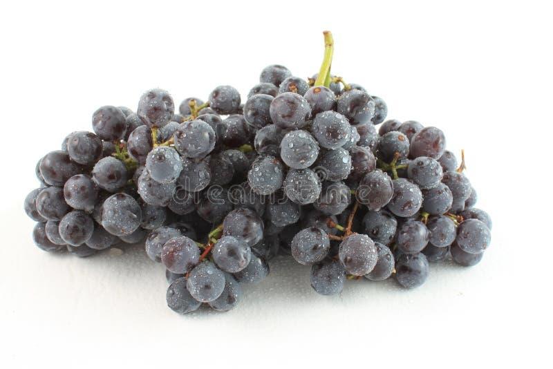 Uvas sin semillas de la coronación foto de archivo libre de regalías