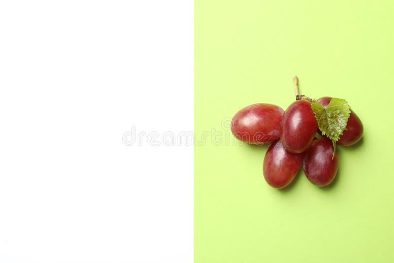 Uvas suculentas maduras frescas no fundo da cor, vista superior imagem de stock