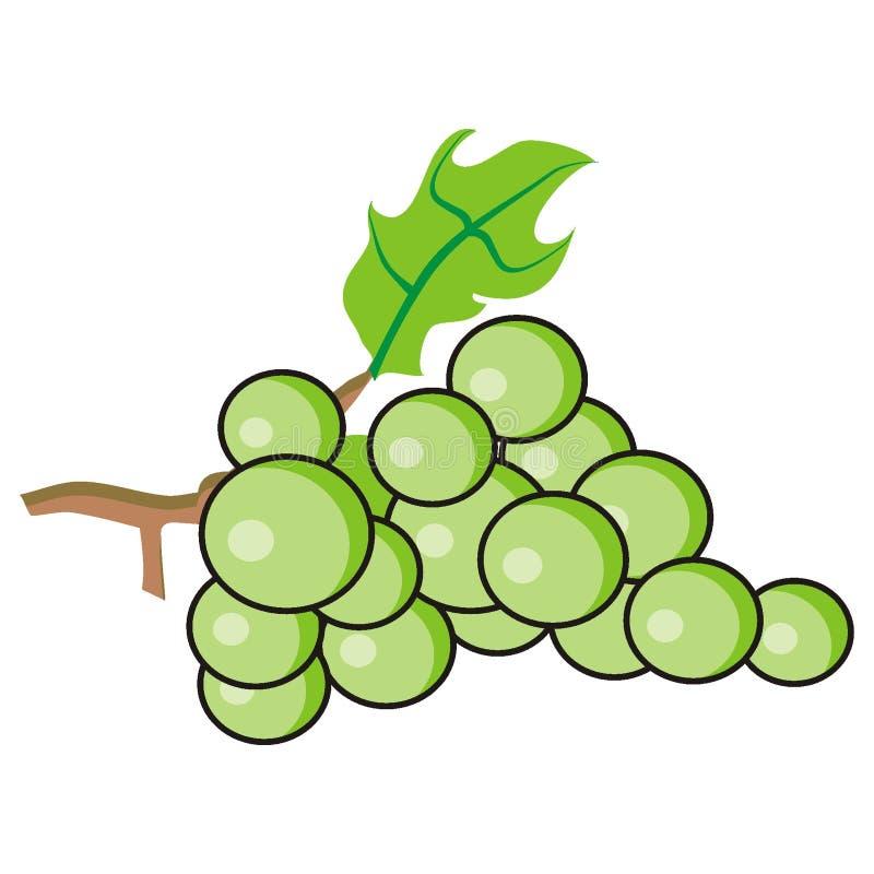 Uvas verdes ilustração stock