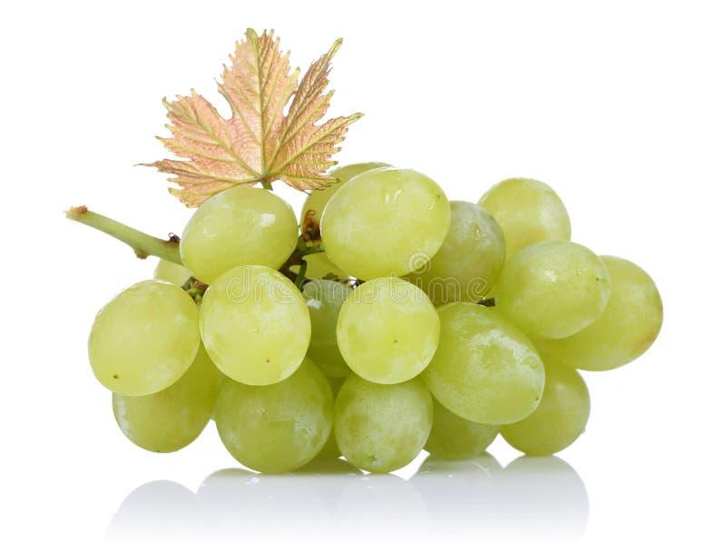 Uvas verdes con la hoja en el fondo blanco imagenes de archivo