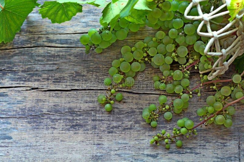 Uvas verdes con las hojas en una cesta que miente en un fondo de madera imagenes de archivo