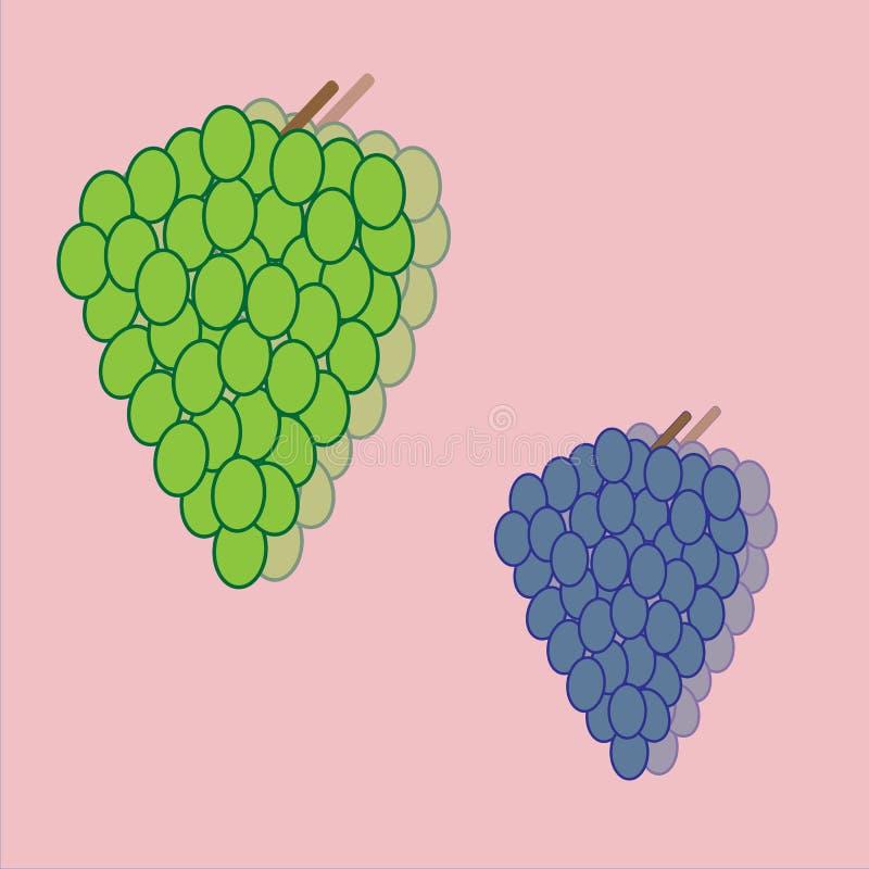 Uvas verdes e grupos roxos ilustração do vetor