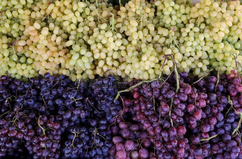 Uvas verdes, rojas, negras en la tienda vegetal griega imagenes de archivo