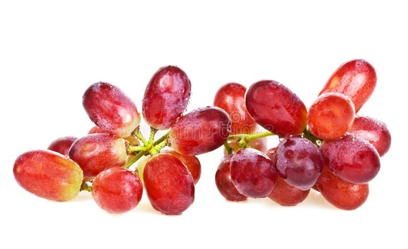 Uvas vermelhas fotos de stock